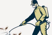 Dịch Vụ Phun Muỗi Tại Vinh